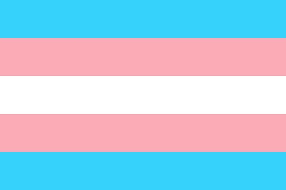 Image for 3 foot by 5 foot Trans Flag